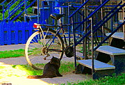 Montreal Streets Paintings - Pretty Cat In Verdun Taking The Sun Blue Picket Fence And Bike Montreal Garden Scene Carole Spandau  by Carole Spandau