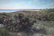 Atlantic Beaches Painting Prints - Pretty in Pink Print by OMalley Keyes