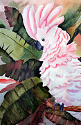 Cute Cockatoo Prints - Pretty in Pink Print by Tricia Gooch