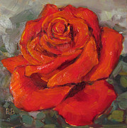 Robie Benve Prints - Pretty in Red Rose Oil Painting Print by Robie Benve