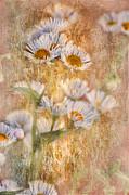 Pretty Little Weeds IIi Print by Debbie Portwood