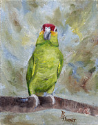 Amazon Parrot Paintings - Pretty Parrot II by Brenda Thour