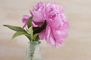 Bottle Green Prints - Pretty Pink Peony Print by Rich Franco