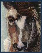 Wet Tapestries - Textiles Framed Prints - Pretty Pony Framed Print by Dena Kotka