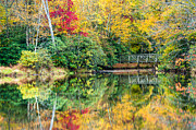 Mark VanDyke - Price Lake Autumn...