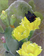 Prickly Pear Flower Print by Adam Johnson