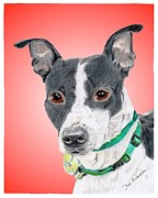 Animal Shelter Mixed Media - Princess - a former shelter sweetie by Dave Anderson