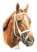 Thoroughbred Horse Art - Princess Of Sylmar by Pat DeLong