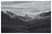 Yukon River Prints - Pristine Valley Print by Priska Wettstein