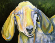 Colorful Drawings Metal Prints - Prize Nubian Goat Metal Print by Susan A Becker