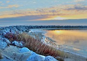 Jetty View Park Photos - Promise of a New Day by Flora Ehrlich