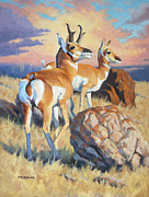 Wyoming Paintings - Pronghorn Sundown by Mark McKenna
