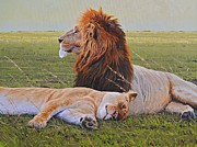 Lions Metal Prints - Protecting the Queen Metal Print by Aaron Blaise