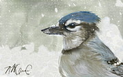 Blue Jay Digital Art - Proud Blue Jay by Naomi McQuade