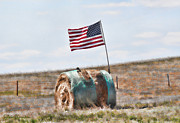 Folk Art American Flag Photos - Proud to be an American by Sylvia Thornton
