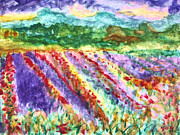 Rhone Alpes Originals - Provence France Field of Flowers by Stanley Morganstein