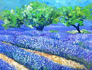 Nancy Van den Boom - Provence Lavender Field