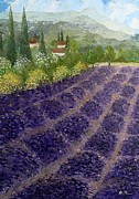 AmaS Art - Provence Lavender Fields
