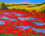Landscapes Of Tuscany Paintings - Provence Poppies by Susi Franco
