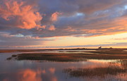 Cape Cod Metal Prints - Province Lands Marsh Sunset Cape Cod National Seashore Metal Print by John Burk