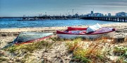 Marooned Prints - Provincetown Beach Print by Susan Lee Giles
