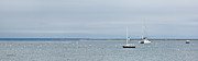 Boat Prints - Provincetown Outlook Print by Michelle Wiarda