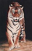 Southeast Asia Paintings - Prowl by DiDi Higginbotham