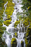 Melani Johnson - Proxy Falls