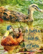 Framed Inspirational Wildlife Photography Posters - Psalm 25 3 Poster by Michelle Greene Wheeler