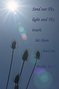 Etsy Posters - Psalm -  Light Poster by Sharon Elliott