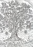 Tree Of Life Drawings - Psalm One by Glenn McCarthy Art and Photography