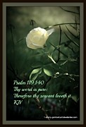 Florida Flowers Prints - Psalms 119 verse 140 Print by Sherry Gombert
