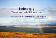 Arlene Rhoda Nanouk - Psalms Chapter29 verse4