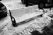 Sask Prints - public bench covered in snow downtown Saskatoon Saskatchewan Canada Print by Joe Fox