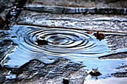 Aqil Jannaty - Puddle water droplet