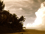 Escape Photo Originals - Puerto Rican Dream by DMBroussard