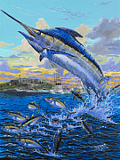 Striped Marlin Framed Prints - Puerto Rico IBT 2013 OFF00144 Framed Print by Carey Chen