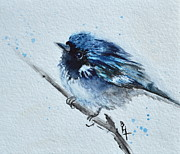 Warbler Originals - Puffed Up II by Beverley Harper Tinsley