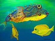 Puffer Fish Paintings - Puffer and Yellow Tangs by Elaine Haakenson