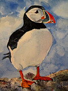 Puffin Paintings - Puffin by Louise Grant