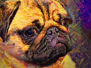 Dogs Digital Art Metal Prints - Pug 20130126v1 Metal Print by Wingsdomain Art and Photography