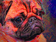 Dogs Digital Art Posters - Pug 20130126v2 Poster by Wingsdomain Art and Photography