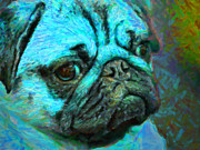 Puppies Digital Art Metal Prints - Pug 20130126v5 Metal Print by Wingsdomain Art and Photography