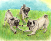 Pug Dogs Prints - Pug Dog Playing Canine Animal Pets Art Print by Cathy Peek