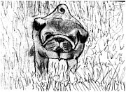 Shaunna Juuti - Pug In The Grass