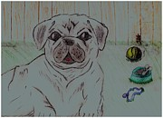 Angelic Drawings - Pug Yard by Shaunna Juuti