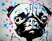 Austin James - Pugs and Kisses