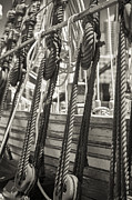 Rope Photos - Pulley and Stay Black and White Sepia by Scott Campbell