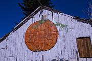 Garry Gay - Pumpkin Barn