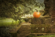 Ruin Photos - Pumpkin by Christopher and Amanda Elwell